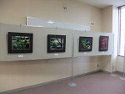 2012写真展7.jpg
