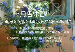 201706店休案内.jpg